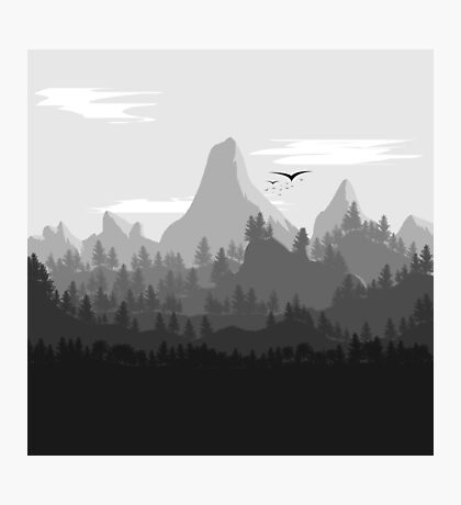 Landscape In Greyscale Photographic Print