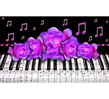 Piano Keyboard Purple Roses Photographic Print