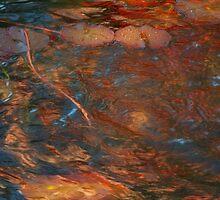 Swirling Fire by Marilyn Cornwell