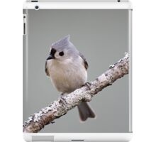 Tufted titmouse perched on a branch iPad Case/Skin