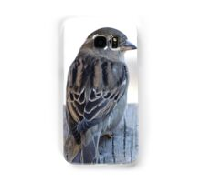 House sparrow sits on a weathered step Samsung Galaxy Case/Skin