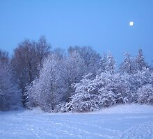 Winter Moon by Jo Nijenhuis