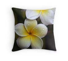 happy holidays and all the very best for 2011!!!! Throw Pillow