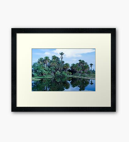 Kanaha Pond Morning Framed Print