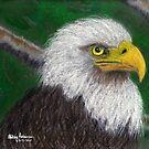 Gail's Bald Eagle by Hilary Robinson