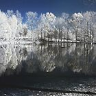 IR Reflections in the Lake by Peter D