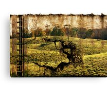 landscape with the ladder Canvas Print