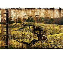 landscape with the ladder Photographic Print