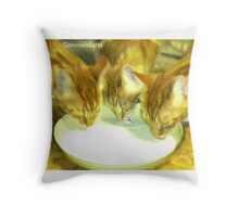 Gemmerskatte Throw Pillow