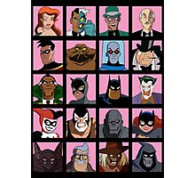 Heroes & Villains  Batman: the Animated Series Photographic Print