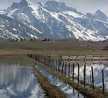Grand Teton at Flood Stage by A.M. Ruttle