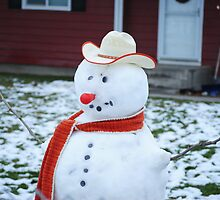 Frosty The Red Nose. . . . by Susan Vinson