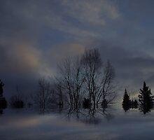 """""""Silent Night"""" by Elfriede Fulda"""