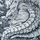 Dragon by bugler
