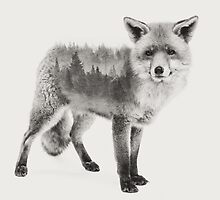 Fox Black and White Double Exposure by DoucetteDesigns