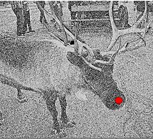 Run, Run Rudolph by Chet  King