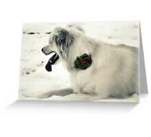 Broach for Christmas Greeting Card