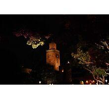 Viking Tower Photographic Print