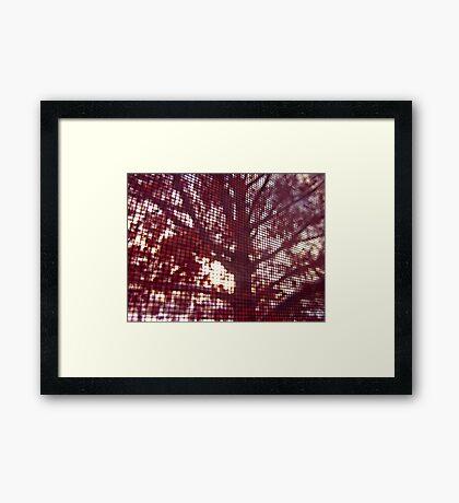 Screen Framed Print