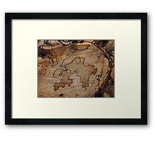 Mystery Object  Framed Print