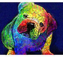 my psychedelic bulldog by jashumbert