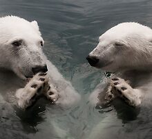 """Bear Prayer"" - polar bears look like they are praying by ArtThatSmiles"