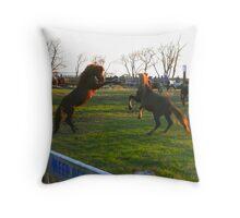 Stallions facing off Throw Pillow