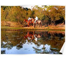 Chincoteague Cowboys Poster