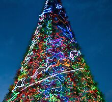 Happy Christmas - Sydney - Australia by Bryan Freeman