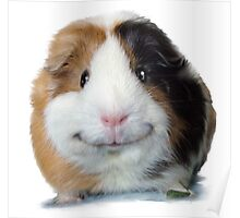 Keep Smiling with Angeelo the Guinea Pig! Poster