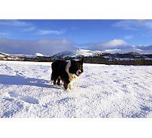 Snow indy Photographic Print