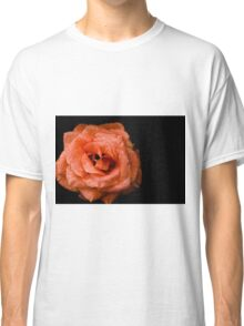 Rose on a black background Classic T-Shirt