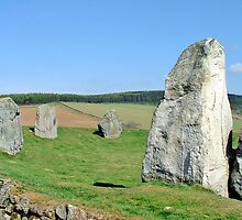 Easter Aquhorthies Stone Circle by Stuart  Fellowes