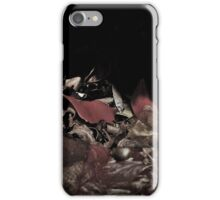Remnants on the Ground iPhone Case/Skin