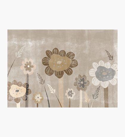 Vintage Sepia Wild Meadow Flowers Photographic Print