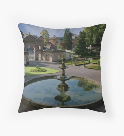 Pool of Reflections Throw Pillow