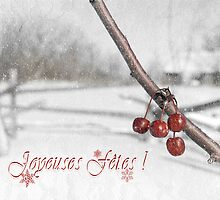 Old Fashioned Christmas (French) by Johanne Brunet