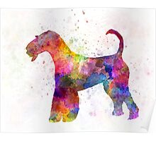 Airedale Terrier 01 in watercolor Poster