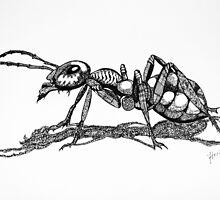 Army Ant by Yorkspalette