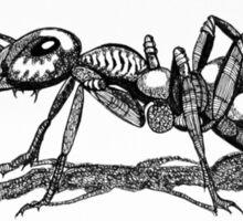 Army Ant Sticker