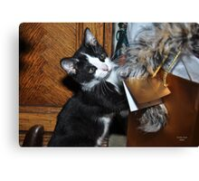""""""" And so this is CHRISTmas """" Canvas Print"""