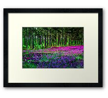 Meadow In Pink And Violet Framed Print