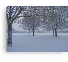 Exeter @ Winter Canvas Print