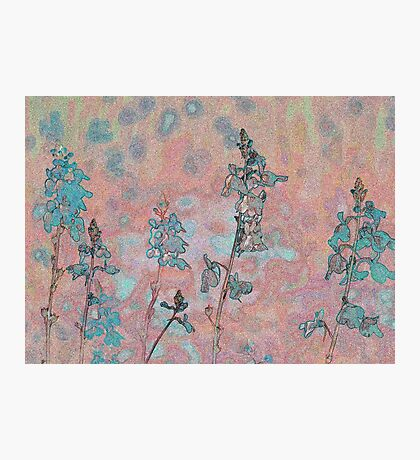 Topaz Coral Meadow Photographic Print