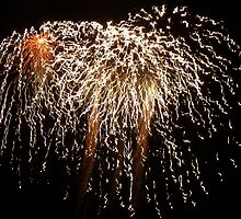 Firework by amylw1