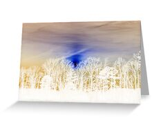 White Splendor Greeting Card