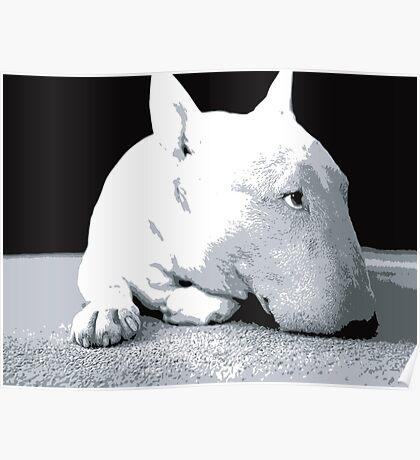 English Bull Terrier Dog, Black and White Pop Art Print Poster