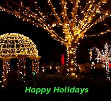 Holiday lights by ♥⊱ B. Randi Bailey
