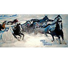 Wild Wild Horses Photographic Print