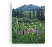 Turquoise Lake mountains, CO Canvas Print